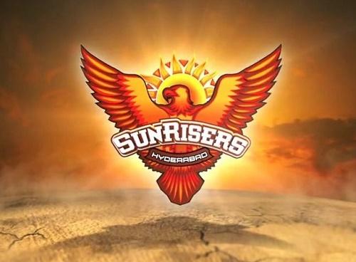 Sunrisers Hyderabad squad for 2015 IPL.