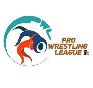 Pro Wrestling league India
