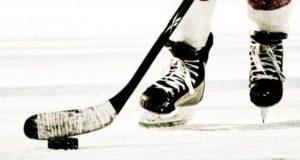 Swedish Hockey League: Rogle BK vs Skelleftea AIK Live Streaming