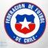 Chile admit of violating COVID-19 protocols at Copa America 2020