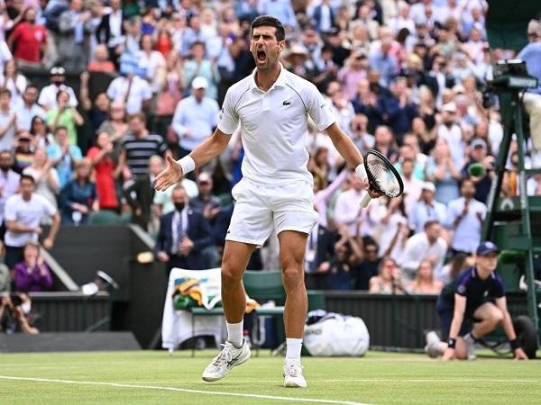 Novak Djokovic plays Wimbledon 2021 final against Matteo Berrettini